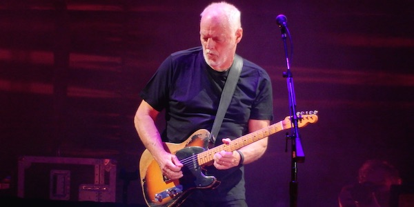 Gilmour Pula6
