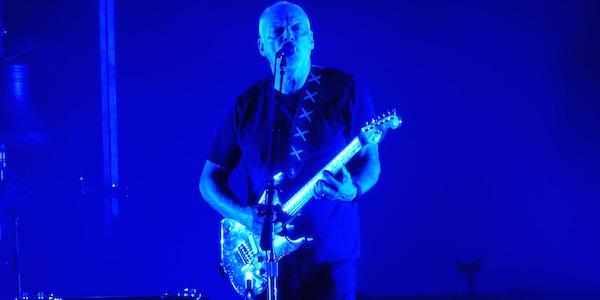 Gilmour Verona6